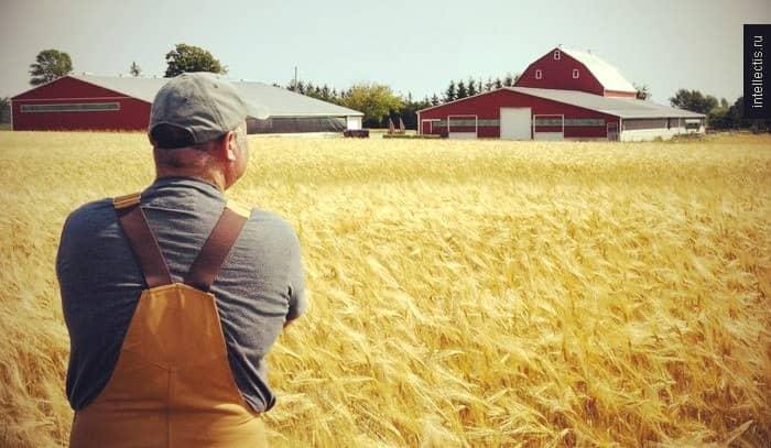 бизнес план ферма