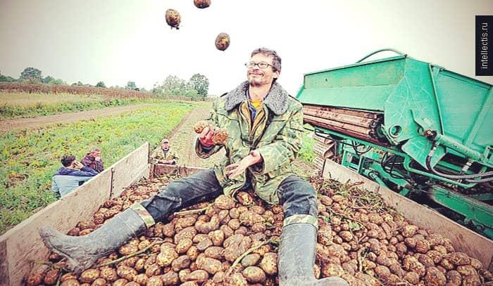 бизнес план крестьянско фермерского хозяйства